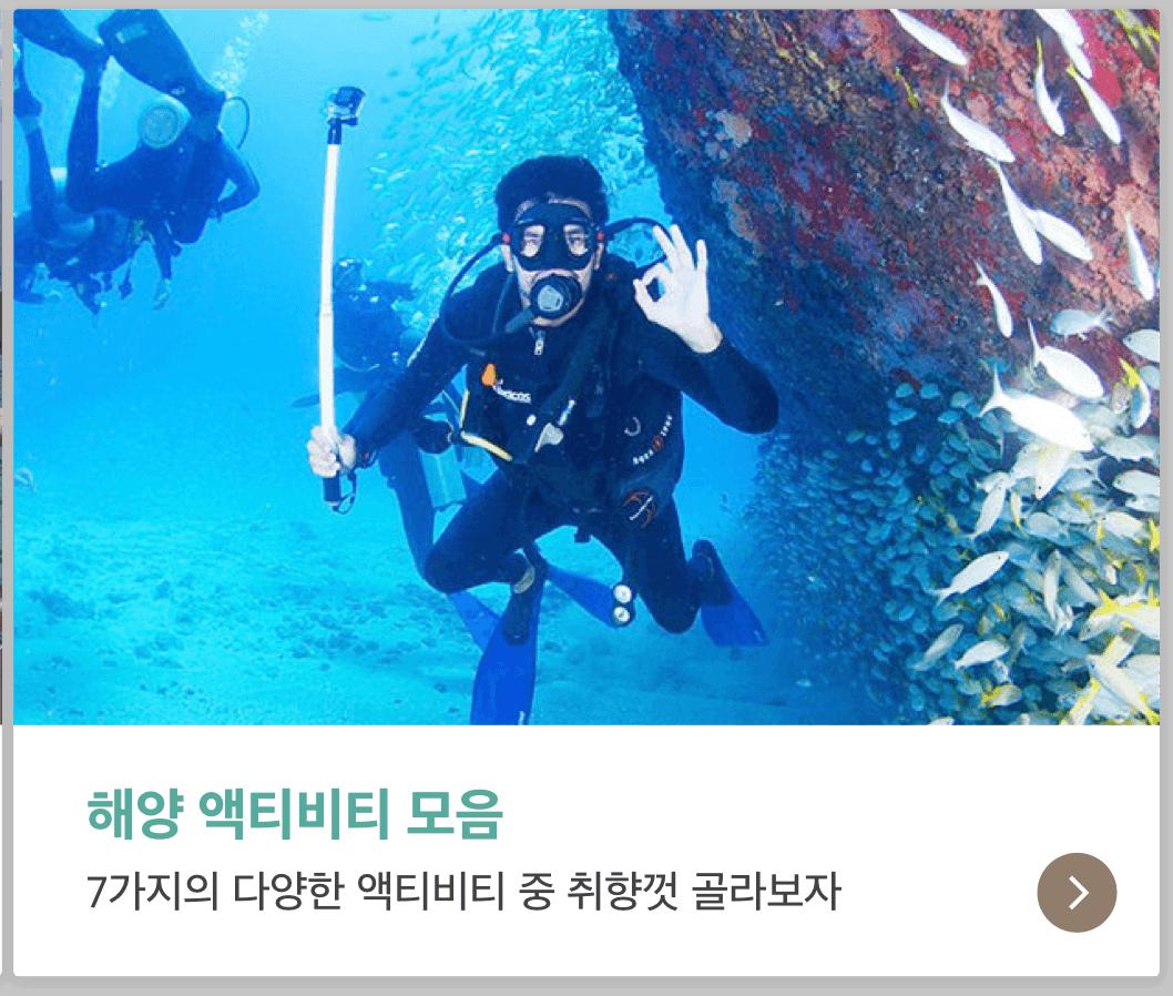 해양 액티비티 모음