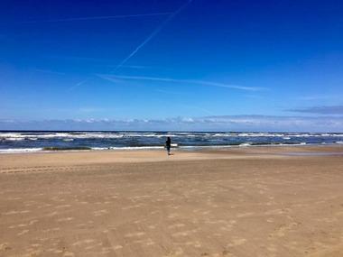 암스테르담, 네덜란드 맞춤여행, 비즈니스, 출장 서비스 지원
