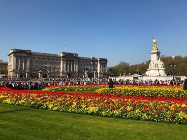 [런던핵심투어] 런던 초행자들을 위한 반나절코스, 런던투어개론 !!