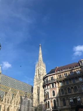 ( 10월 ~ 3월 한정) 비엔나의 best winter 투어