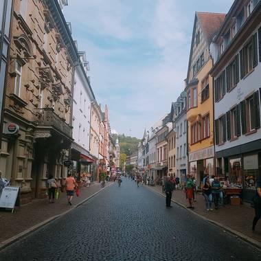 세계적 환경도시 프라이부르크에서 함께하는 검은 숲, 친환경 생태 지구 여행