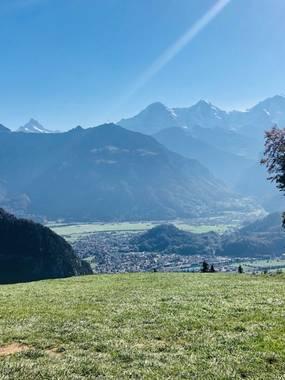 [투어] 최다 후기 & 믿고 예약하는 패러글라이딩 :: 스위스/인터라켄