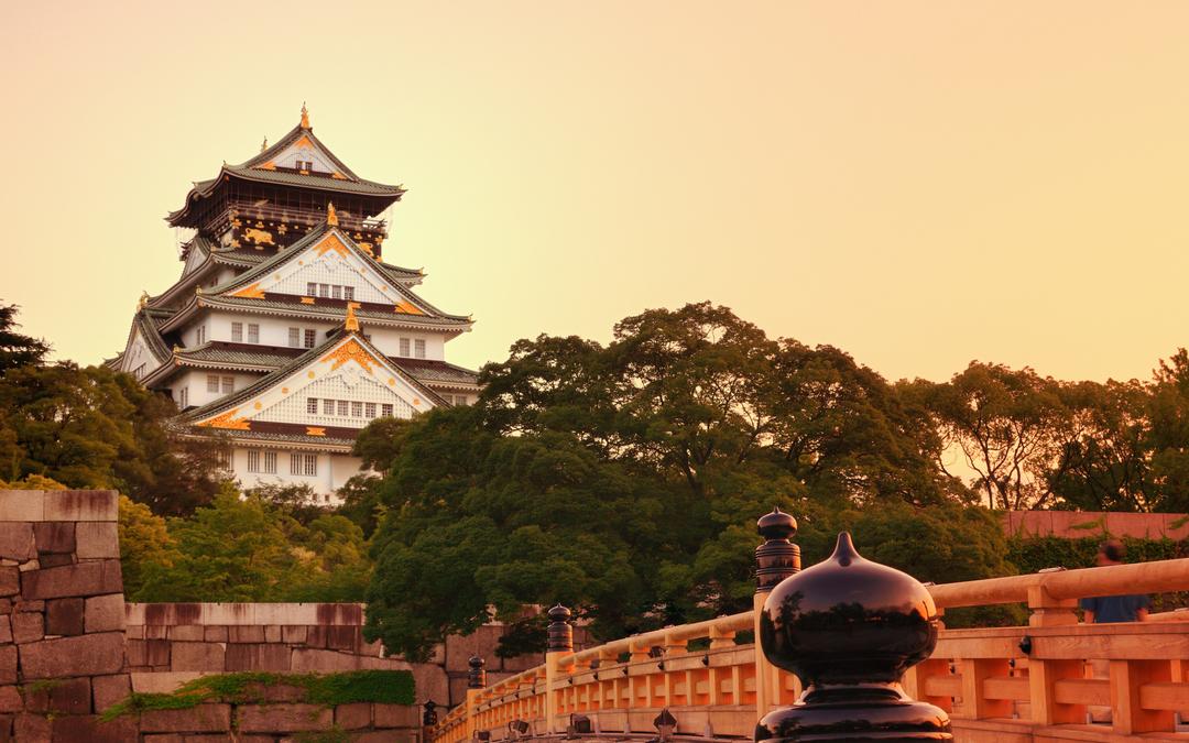 오사카 꽃놀이