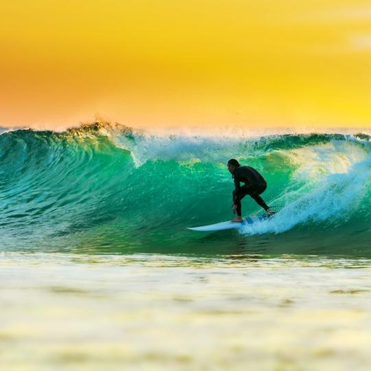 서핑 하고 갈래?